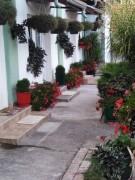Rascvetano dvorištance - sobe u Vrnjackoj Banji